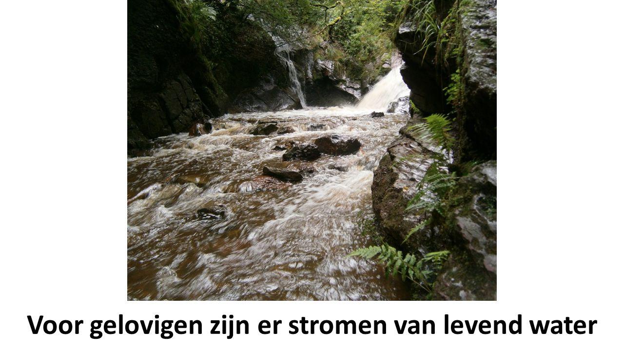 Voor gelovigen zijn er stromen van levend water