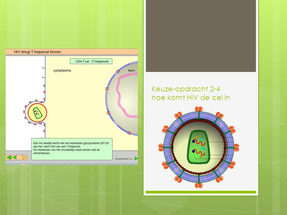 Keuze-opdracht 2-4 hoe komt HIV de cel in