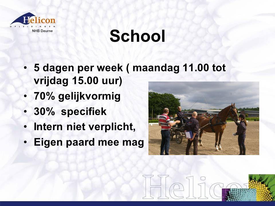 NHB Deurne School 5 dagen per week ( maandag 11.00 tot vrijdag 15.00 uur) 70% gelijkvormig 30% specifiek Intern niet verplicht, Eigen paard mee mag