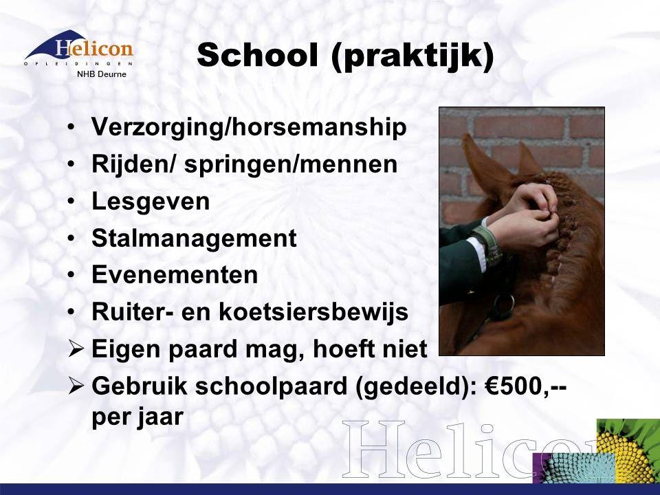 NHB Deurne School (praktijk) Verzorging/horsemanship Rijden/ springen/mennen Lesgeven Stalmanagement Evenementen Ruiter- en koetsiersbewijs  Eigen pa