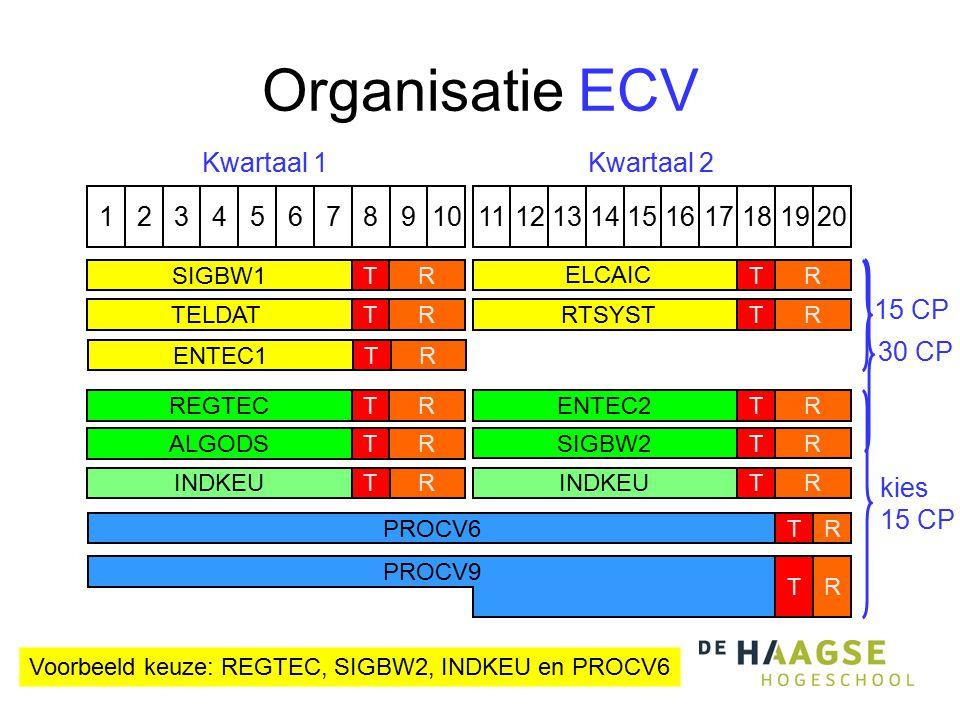 Organisatie ECV 1324576891110121315141617191820 PROCV6TR Kwartaal 1Kwartaal 2 RREGTECT ALGODSTR RENTEC2TRSIGBW2T kies 15 CP Voorbeeld keuze: REGTEC, S