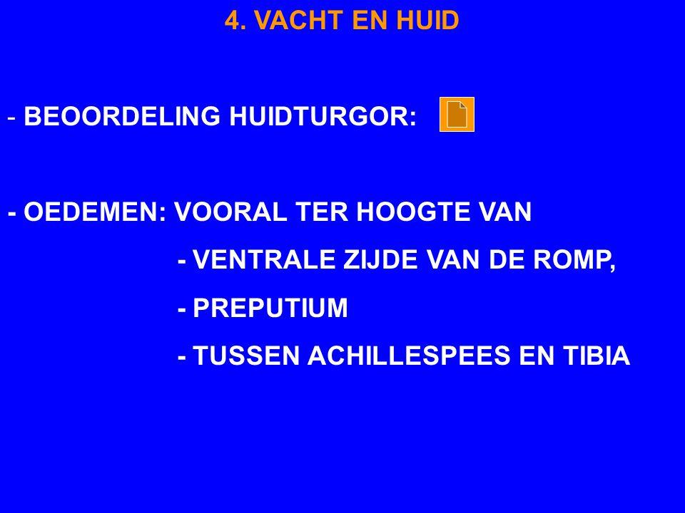 4. VACHT EN HUID - BEOORDELING HUIDTURGOR: - OEDEMEN: VOORAL TER HOOGTE VAN - VENTRALE ZIJDE VAN DE ROMP, - PREPUTIUM - TUSSEN ACHILLESPEES EN TIBIA
