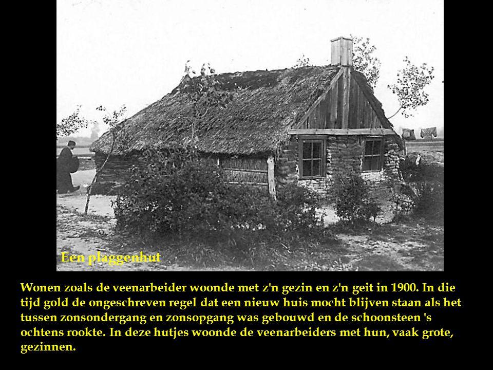 Een plaggenhut Wonen zoals de veenarbeider woonde met z n gezin en z n geit in 1900.