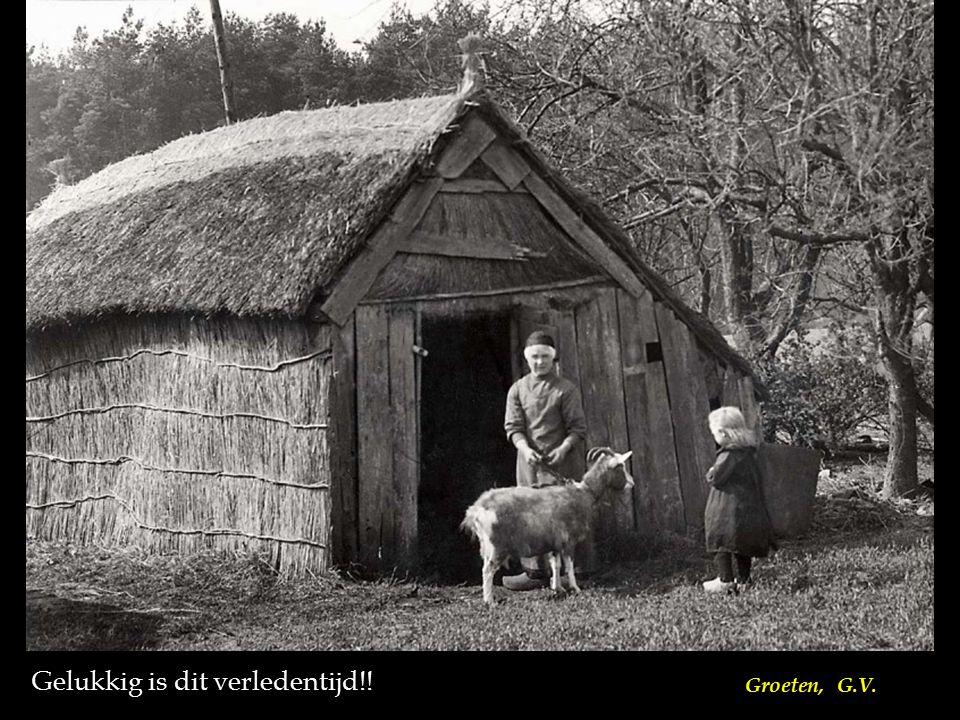 Sommige gezinnen hadden nauwelijks meer dan een dak boven hun hoofd, een tafel en een bedstee. Bij gebrek aan borden en bestek werden de aardappelen v