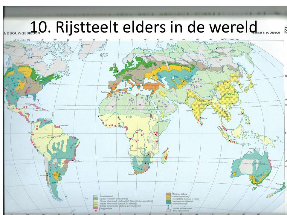 10. Rijstteelt elders in de wereld