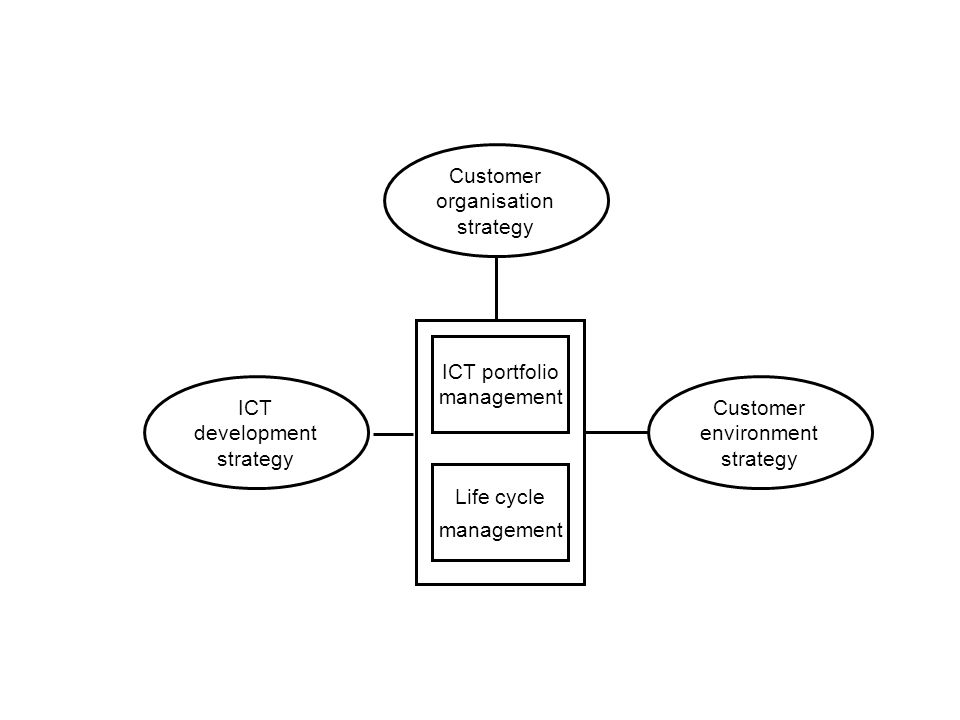 ICT development strategy Customer organisation strategy Customer environment strategy ICT portfolio management Life cycle management