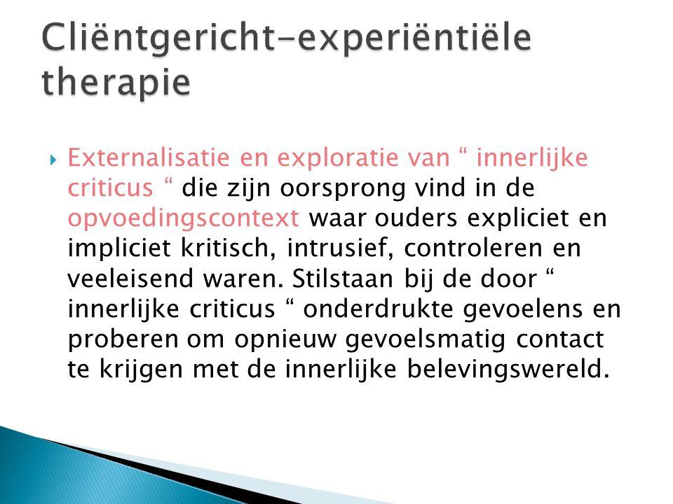  Externalisatie en exploratie van innerlijke criticus die zijn oorsprong vind in de opvoedingscontext waar ouders expliciet en impliciet kritisch, intrusief, controleren en veeleisend waren.