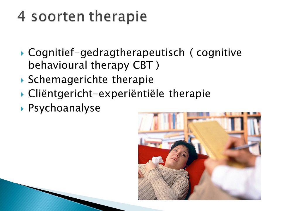  Cognitief-gedragtherapeutisch ( cognitive behavioural therapy CBT )  Schemagerichte therapie  Cliëntgericht-experiëntiële therapie  Psychoanalyse