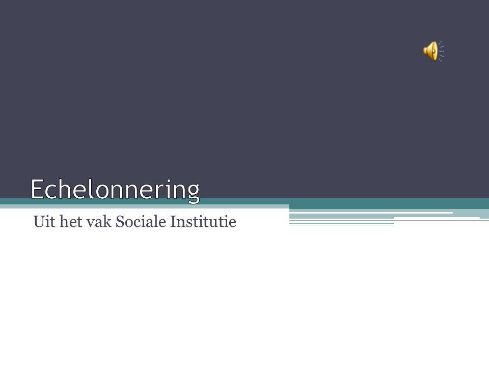 Uit het vak Sociale Institutie