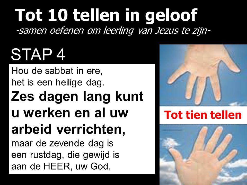 Tot 10 tellen in geloof -samen oefenen om leerling van Jezus te zijn- STAP 4 Hou de sabbat in ere, het is een heilige dag. Zes dagen lang kunt u werke