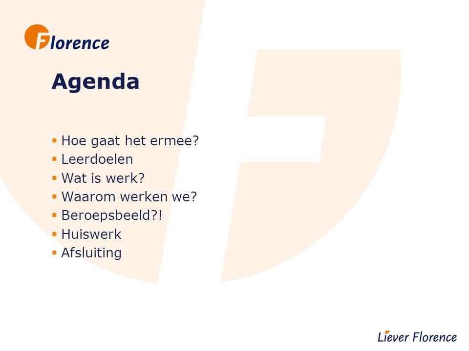 Agenda  Hoe gaat het ermee?  Leerdoelen  Wat is werk?  Waarom werken we?  Beroepsbeeld?!  Huiswerk  Afsluiting
