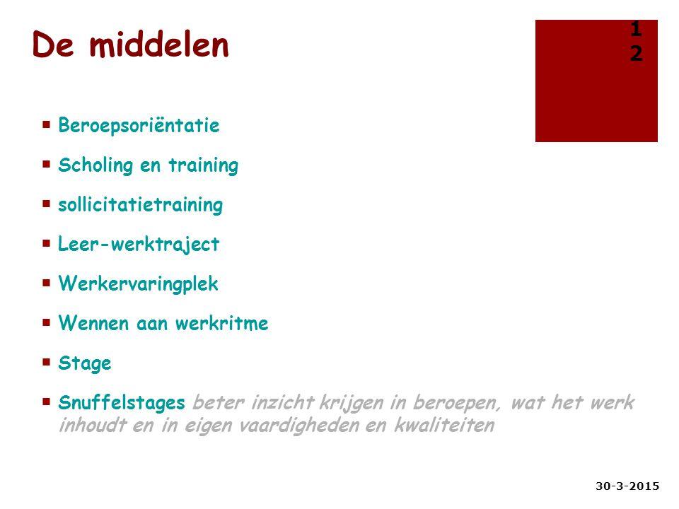 De middelen  Beroepsoriëntatie  Scholing en training  sollicitatietraining  Leer-werktraject  Werkervaringplek  Wennen aan werkritme  Stage  S