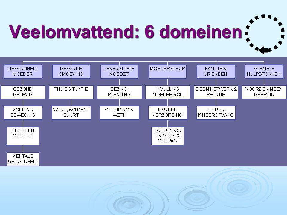 Veelomvattend: 6 domeinen