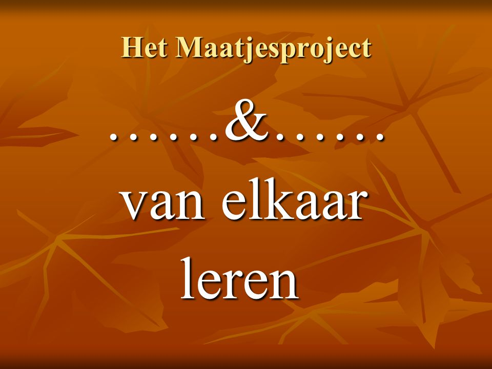 Het Maatjesproject ……&…… van elkaar van elkaar leren leren