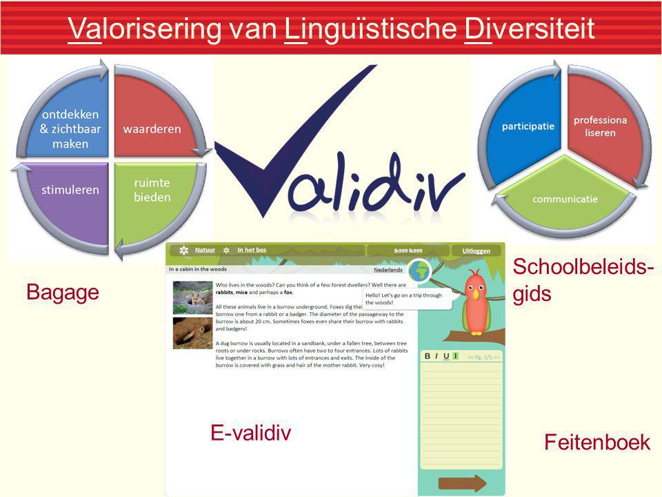 Valorisering van Linguïstische Diversiteit Bagage Schoolbeleids- gids Feitenboek E-validiv