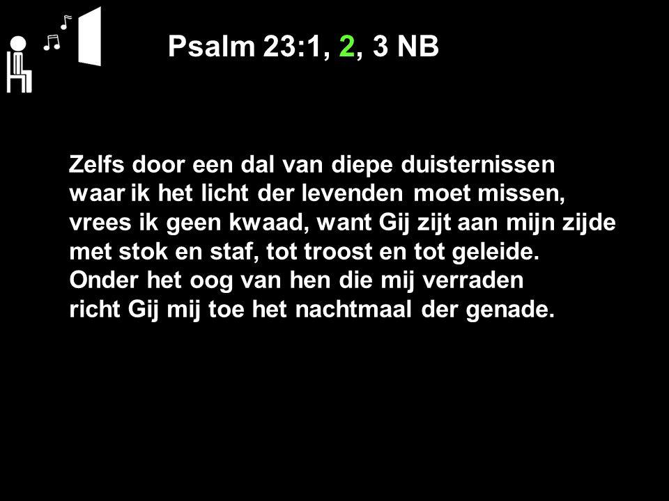 Psalm 23:1, 2, 3 NB Zelfs door een dal van diepe duisternissen waar ik het licht der levenden moet missen, vrees ik geen kwaad, want Gij zijt aan mijn zijde met stok en staf, tot troost en tot geleide.