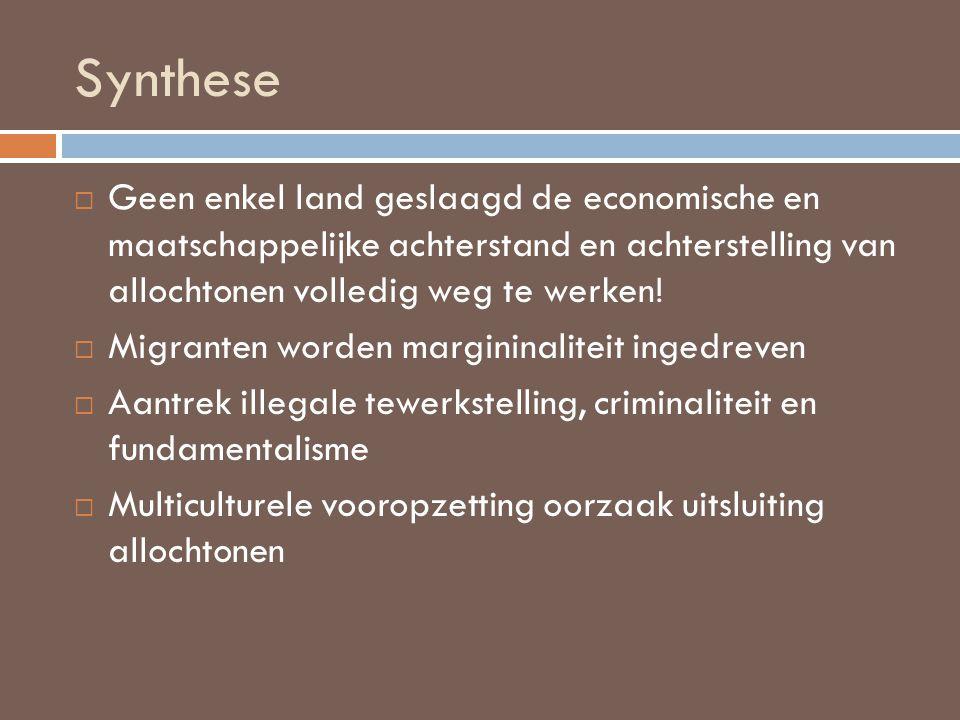 Synthese  Allochtonen hebben ook rechten en plichten.