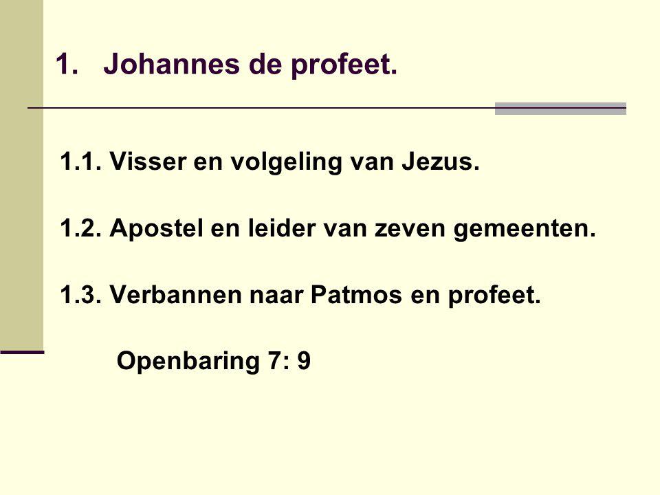 1. Johannes de profeet. 1.1. Visser en volgeling van Jezus.