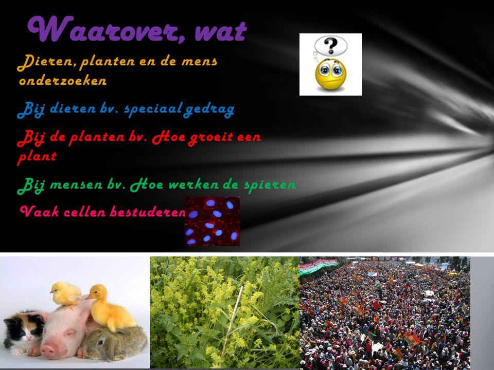 Dieren, planten en de mens onderzoeken Bij dieren bv. speciaal gedrag Bij de planten bv. Hoe groeit een plant Bij mensen bv. Hoe werken de spieren Vaa