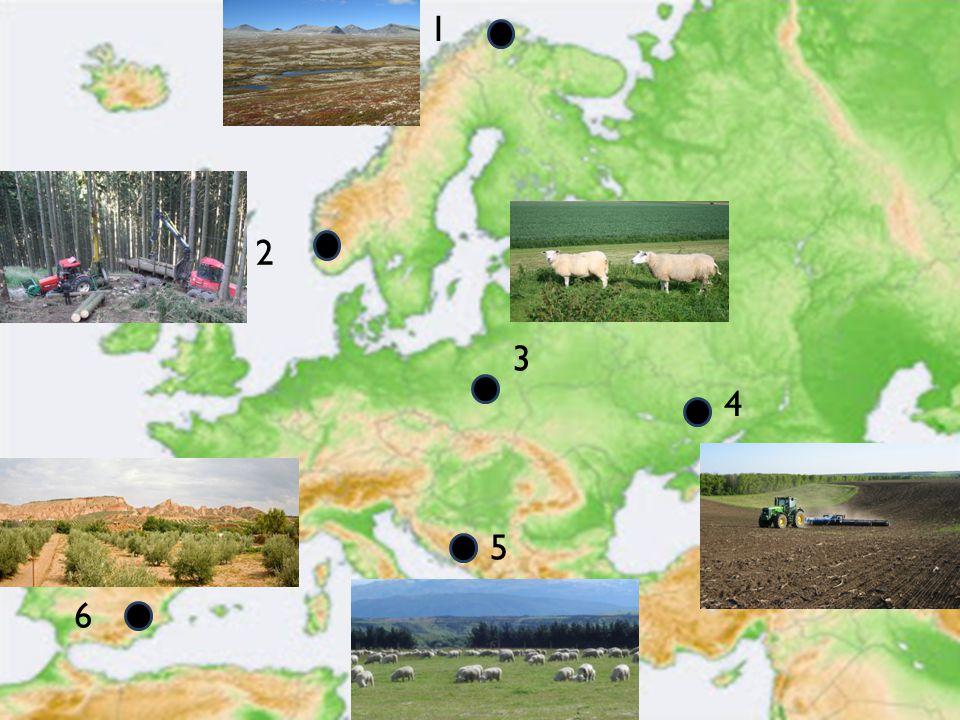 Vandaag leren we welke landbouwlandschappen voorkomen er zijn in Europa, waar ze voorkomen en waarom.