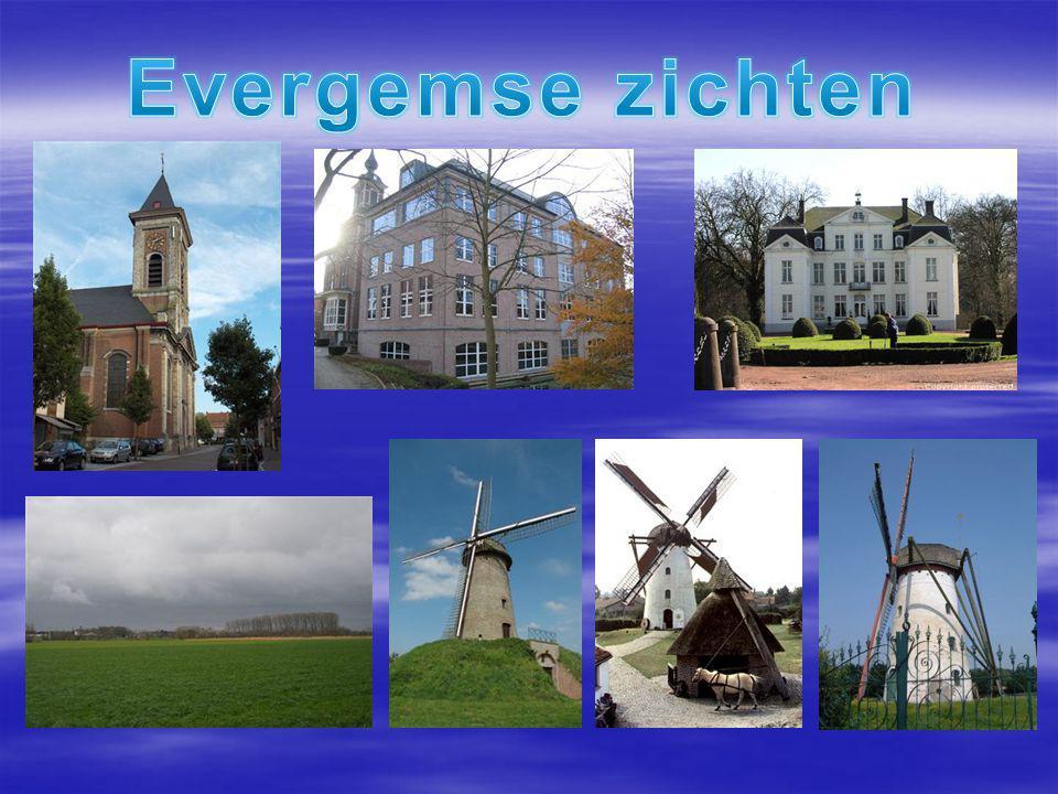 Actie tegen zwerfvuil Evenementen in Gent Chemie op school Studieoriëntatie in het beroepenhuis Werken in het museum Op siertoer