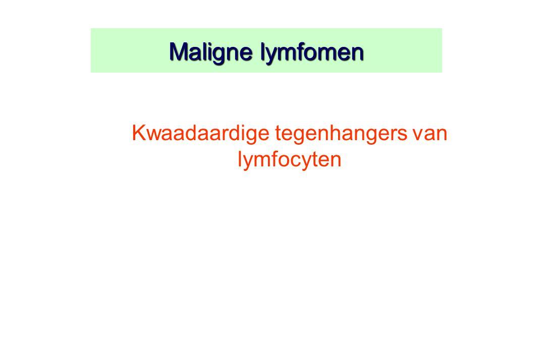 Maligne lymfomen Kwaadaardige tegenhangers van lymfocyten