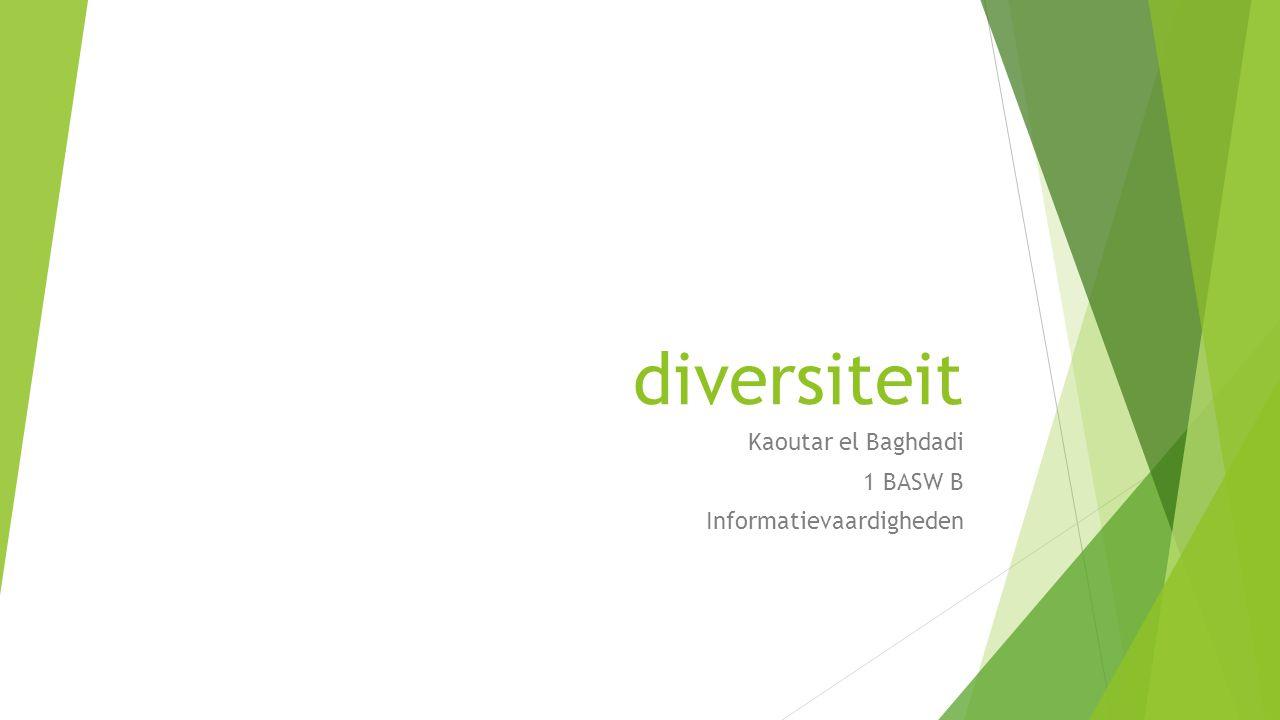 diversiteit Kaoutar el Baghdadi 1 BASW B Informatievaardigheden