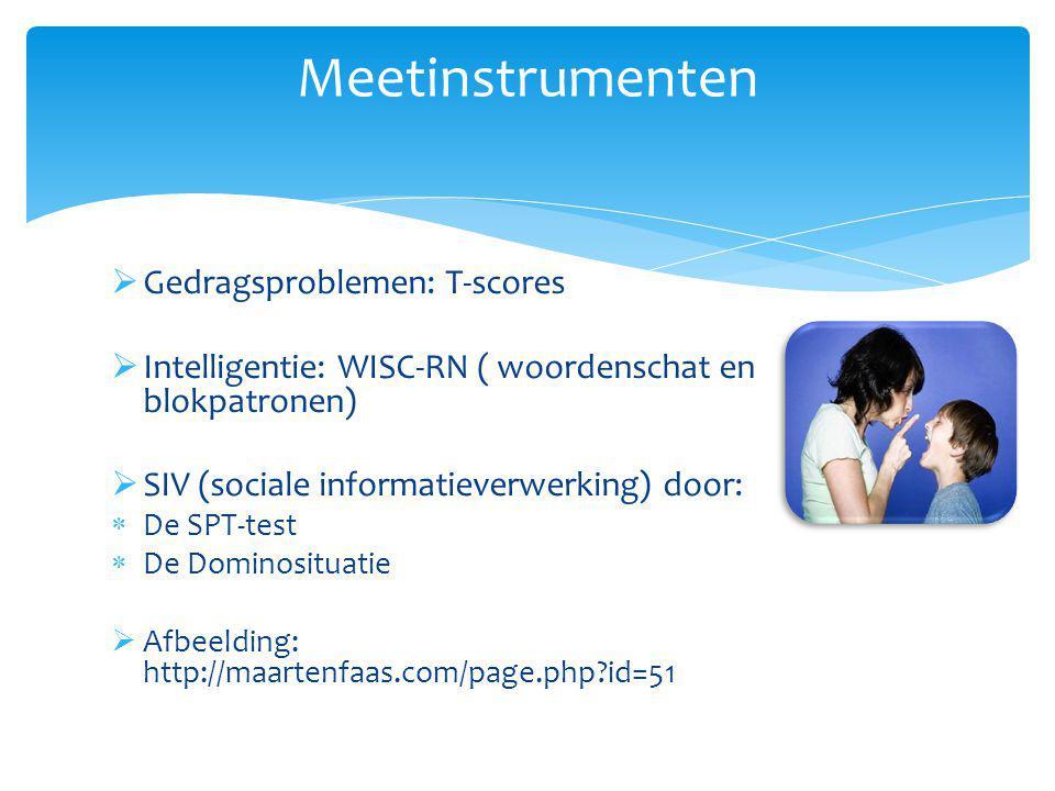  Gedragsproblemen: T-scores  Intelligentie: WISC-RN ( woordenschat en blokpatronen)  SIV (sociale informatieverwerking) door:  De SPT-test  De Do