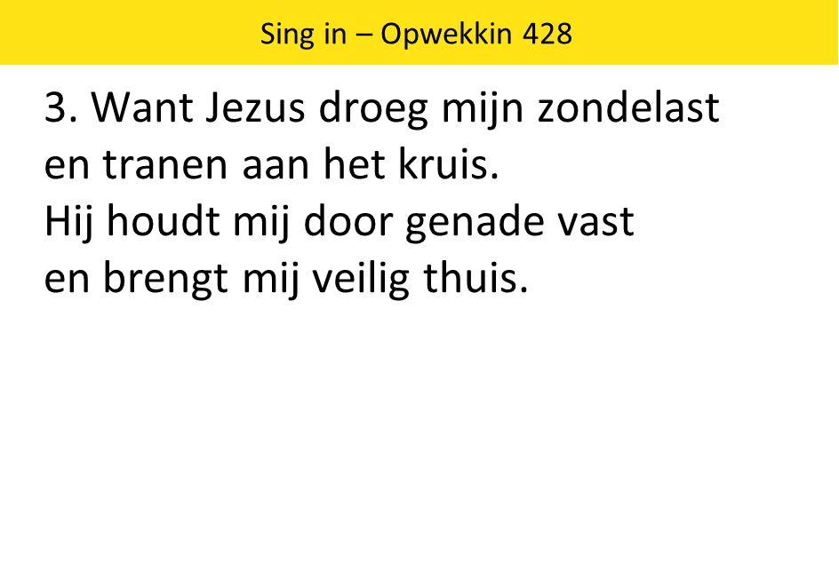 3. Want Jezus droeg mijn zondelast en tranen aan het kruis.