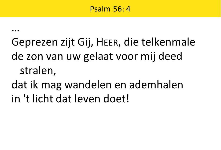 Psalm 56: 4 … Geprezen zijt Gij, H EER, die telkenmale de zon van uw gelaat voor mij deed stralen, dat ik mag wandelen en ademhalen in t licht dat leven doet!