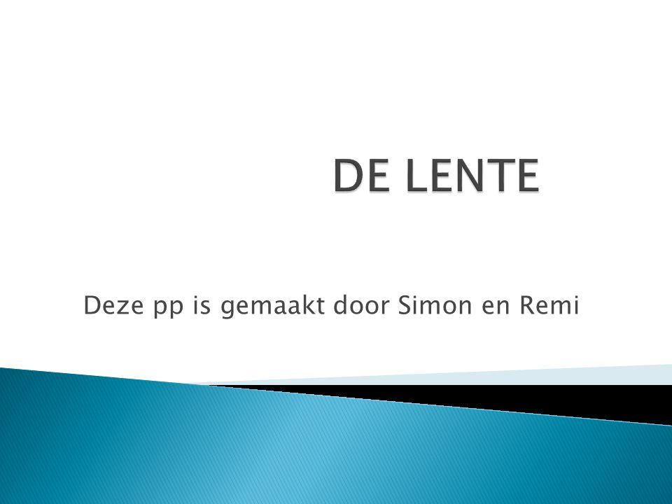 Deze pp is gemaakt door Simon en Remi