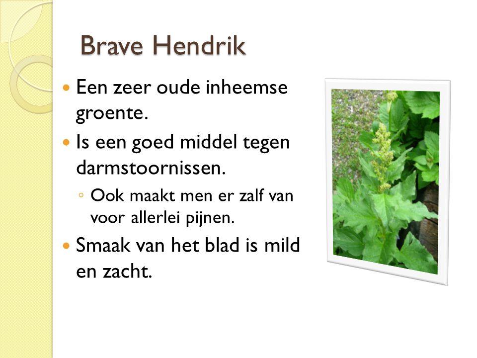 Brave Hendrik Een zeer oude inheemse groente. Is een goed middel tegen darmstoornissen. ◦ Ook maakt men er zalf van voor allerlei pijnen. Smaak van he