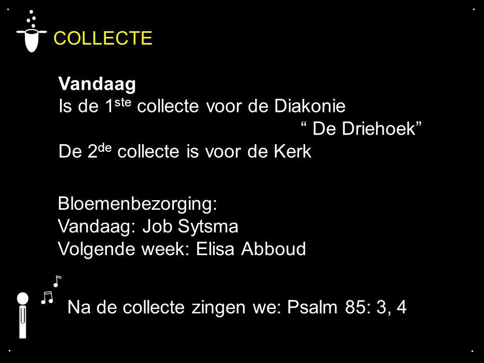 """.... COLLECTE Vandaag Is de 1 ste collecte voor de Diakonie """" De Driehoek"""" De 2 de collecte is voor de Kerk Bloemenbezorging: Vandaag: Job Sytsma Volg"""