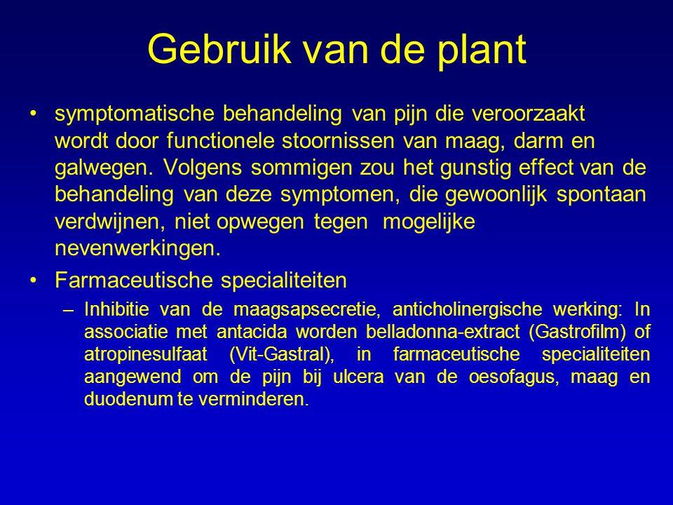 Gebruik van de plant symptomatische behandeling van pijn die veroorzaakt wordt door functionele stoornissen van maag, darm en galwegen. Volgens sommig