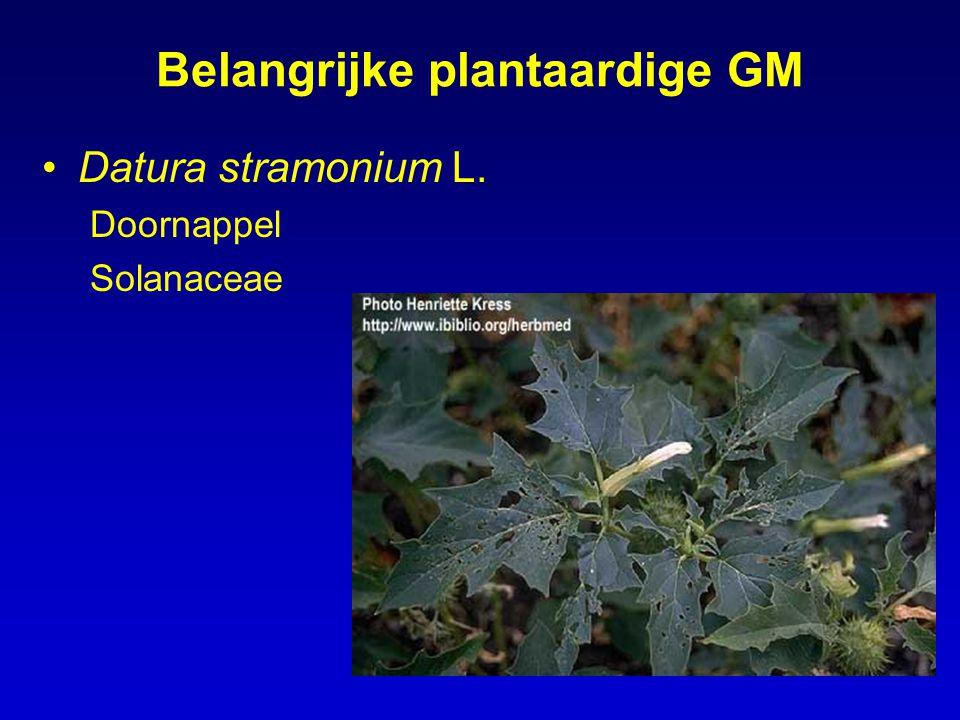 Van deze planten: bladeren als grondstof zijn toxisch en veroorzaken hallucinaties De alkaloiden (atropine) worden ook als zuivere stof aangewend komen alledrie voor in Europa, hfdz gecultiveerd in Oost-Europa