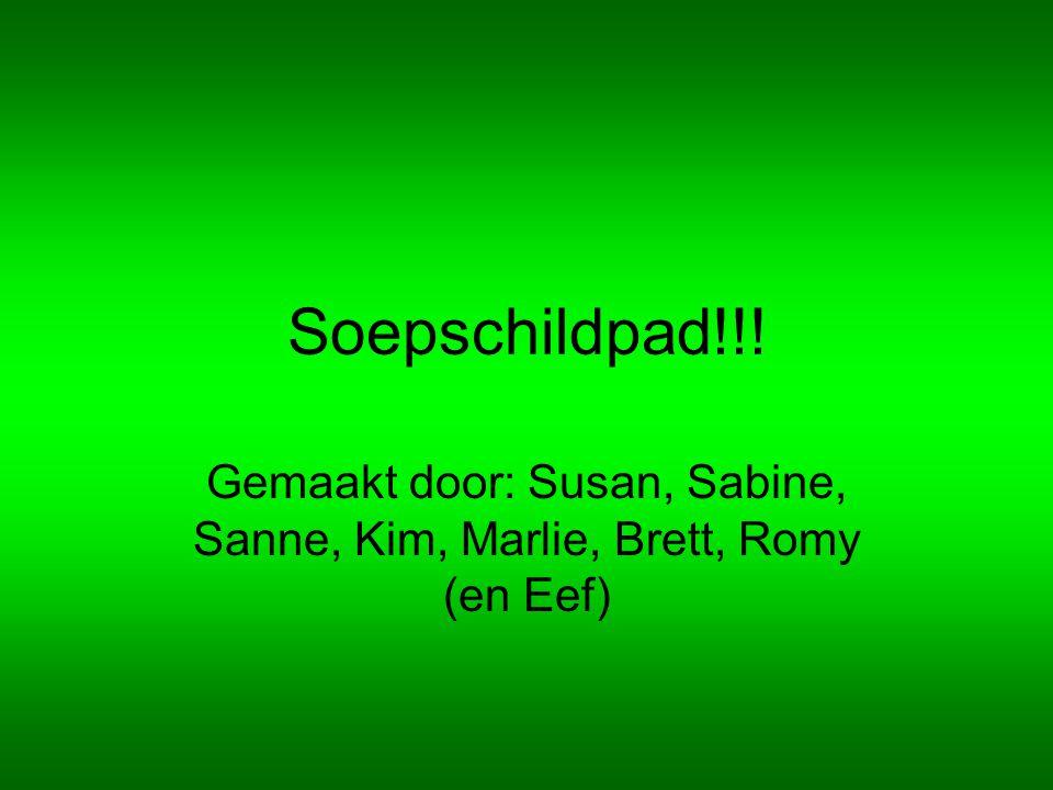 Soepschildpad!!! Gemaakt door: Susan, Sabine, Sanne, Kim, Marlie, Brett, Romy (en Eef)