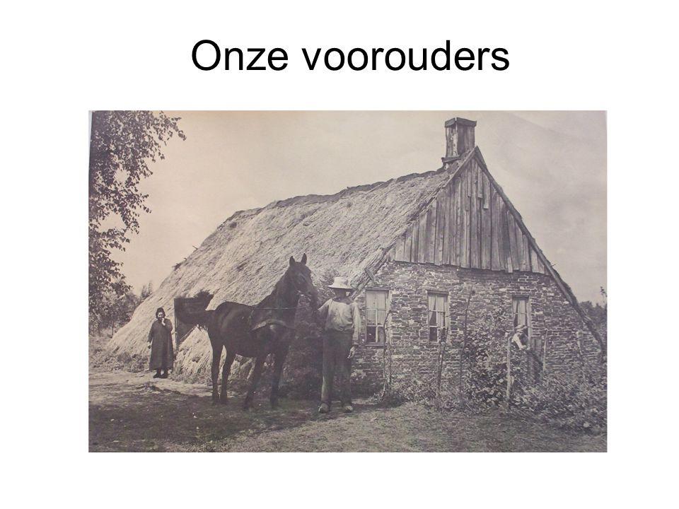 Onze voorouders