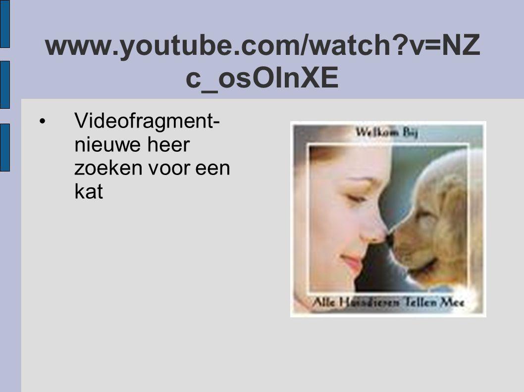 www.youtube.com/watch?v=NZ c_osOInXE Videofragment- nieuwe heer zoeken voor een kat