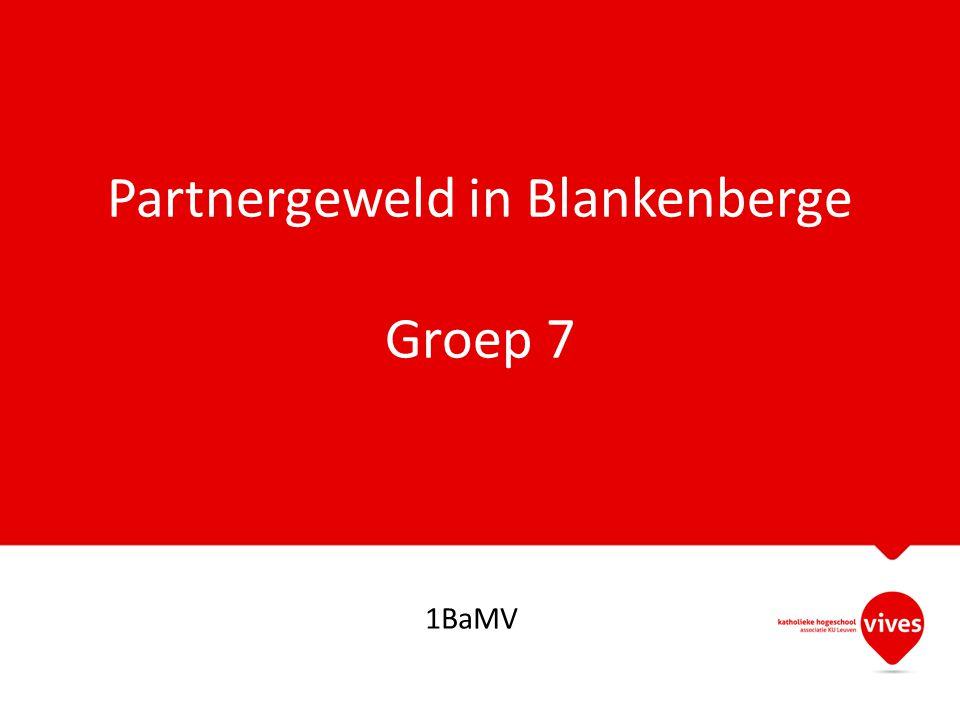 Partnergeweld in Blankenberge Groep 7 1BaMV