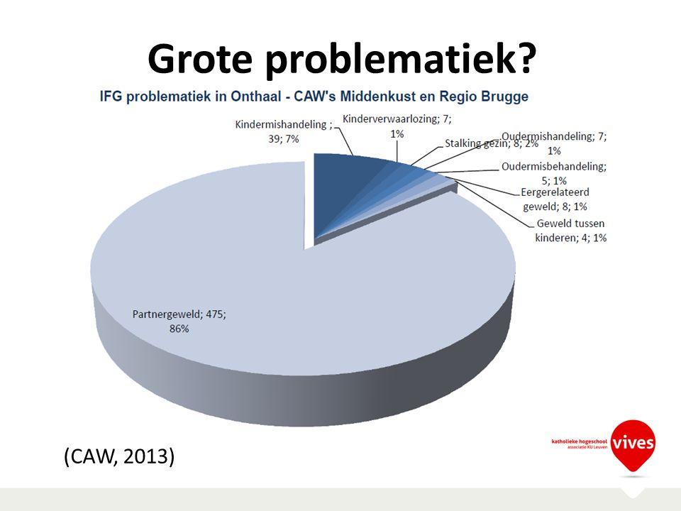 Grote problematiek? (CAW, 2013)