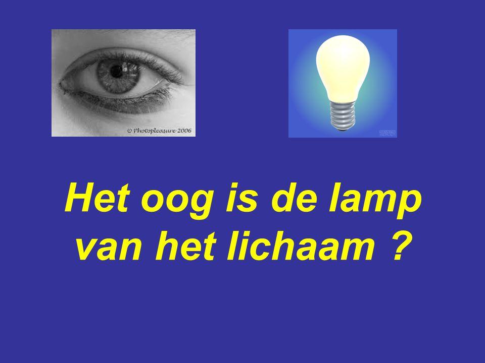 Het oog is de lamp van het lichaam ?