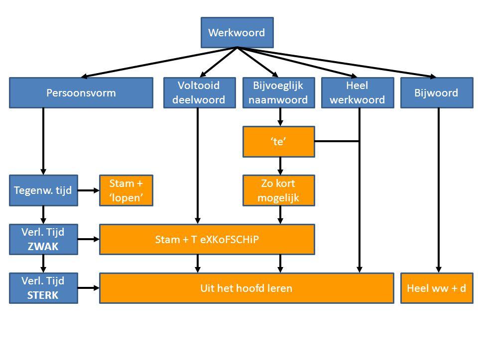 Hoe werkt stam + TeXKoFSCHiP?