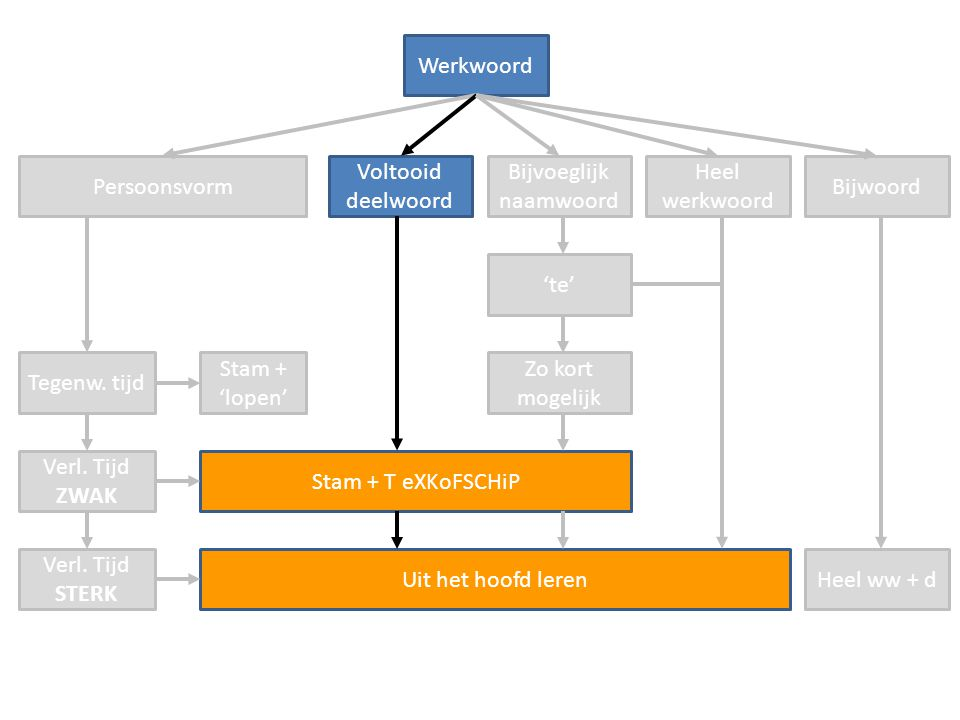 Hoe werkt stam + TeXKoFSCHiP.Wat is de stam (de ik-vorm).