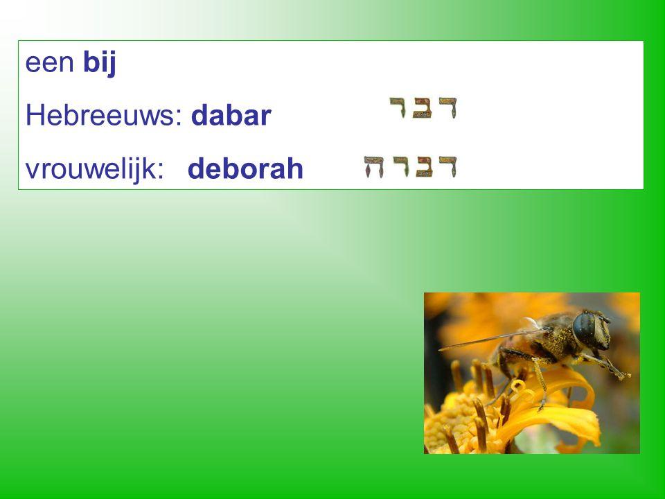woord voor 'woord' is óók 'dabar' 1 Hierna kwam het woord des HEREN tot Abram in een gezicht… Genesis 15