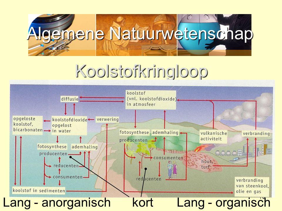 Algemene Natuurwetenschap 10 Koolstofkringloop kortLang - anorganischLang - organisch