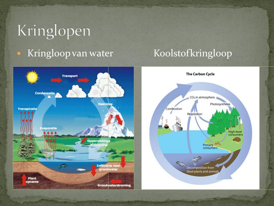 Kringloop van waterKoolstofkringloop