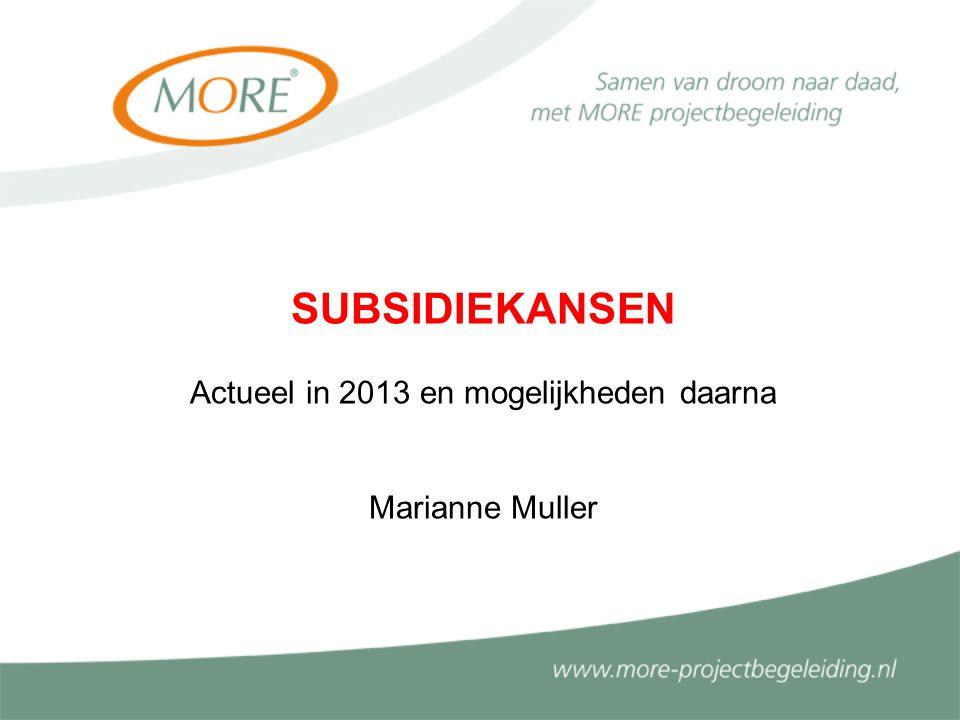 SUBSIDIEKANSEN Actueel in 2013 en mogelijkheden daarna Marianne Muller