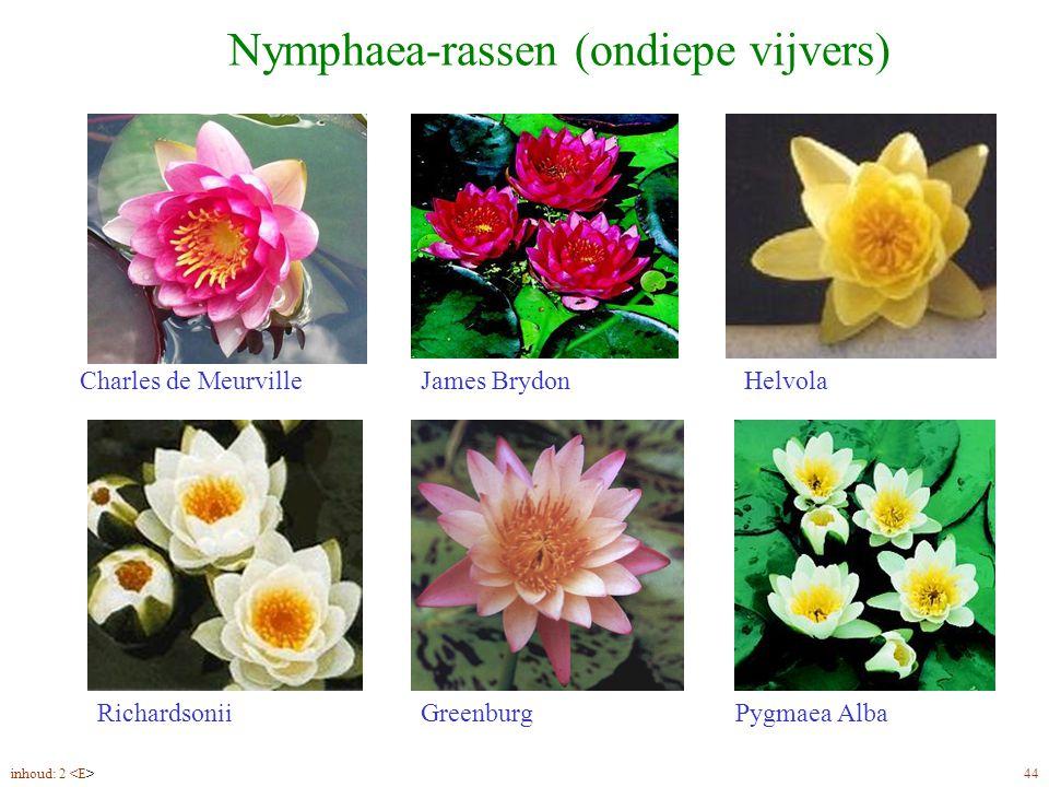 Nymphaea-rassen (ondiepe vijvers) Charles de MeurvilleHelvolaJames Brydon RichardsoniiGreenburgPygmaea Alba inhoud: 2 44