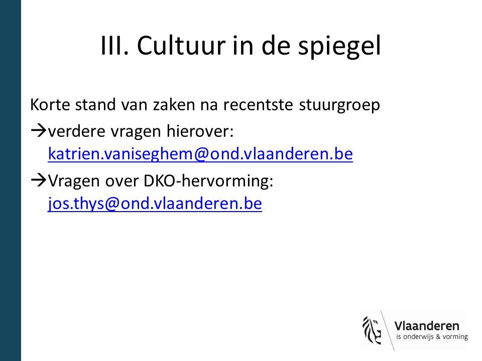 III. Cultuur in de spiegel Korte stand van zaken na recentste stuurgroep  verdere vragen hierover: katrien.vaniseghem@ond.vlaanderen.be katrien.vanis