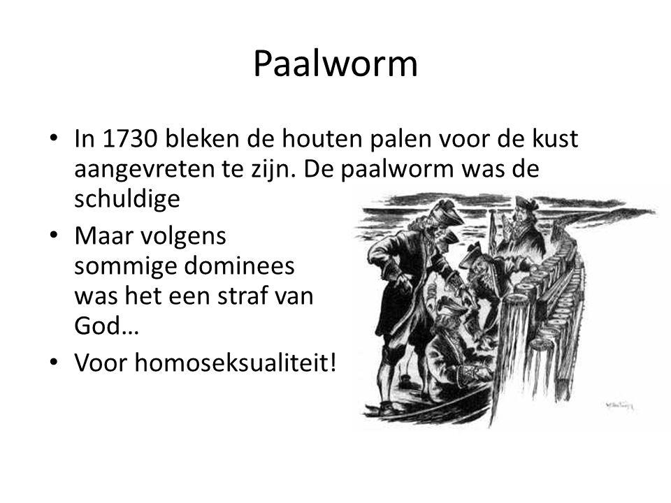 Paalworm In 1730 bleken de houten palen voor de kust aangevreten te zijn. De paalworm was de schuldige Maar volgens sommige dominees was het een straf